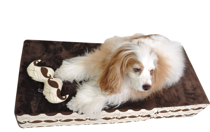 dog pet bed